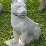 Mẫu chó đá đẹp 001